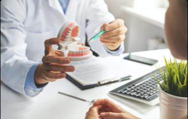 (image) dentiste qui montre la dentition d'un modèle plastique