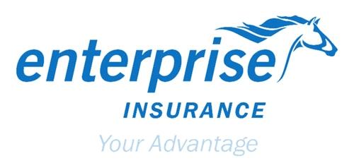 Logo entreprise insurance Ghana